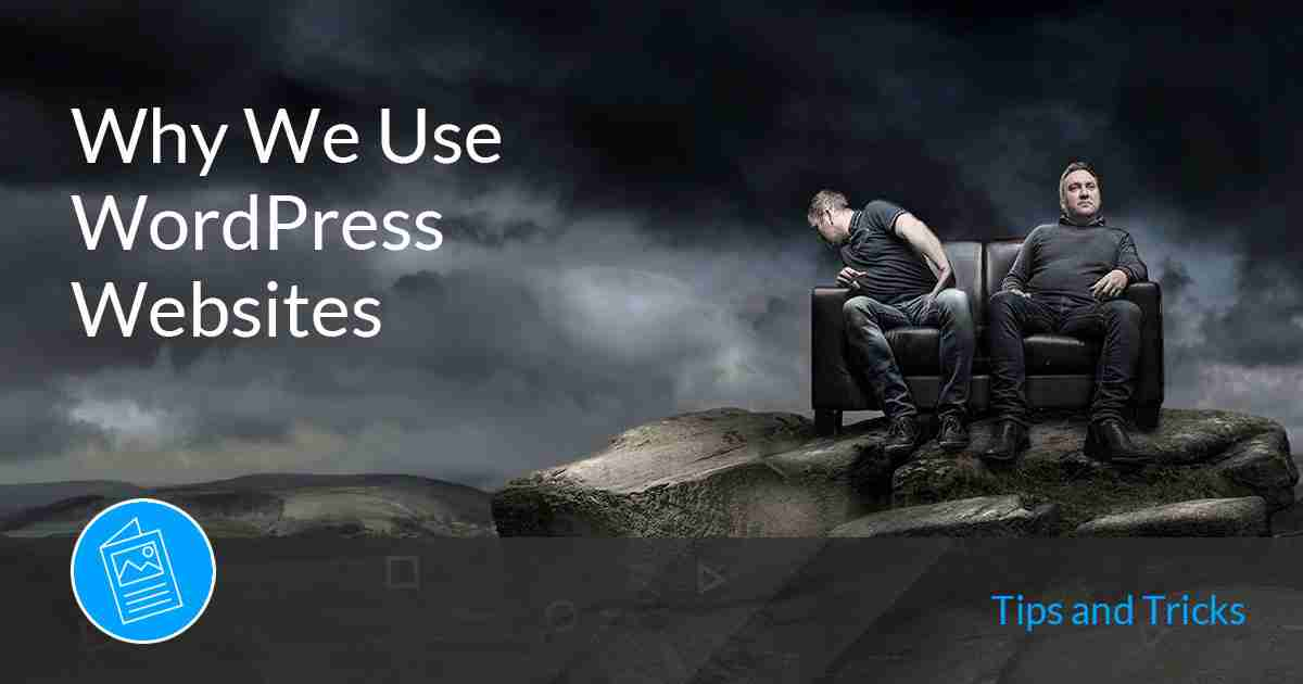 Why we use wordpress websites
